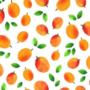 Apricot,  apricot