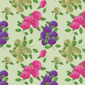 Pink hydrangea flowers (light green)