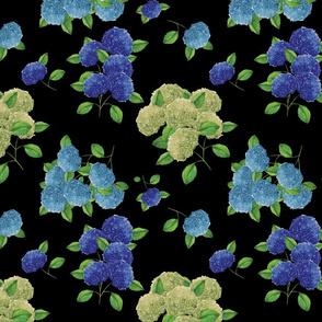 Blue hydrangea flowers (black)