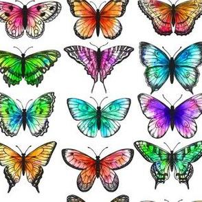 Watercolor_butterfly