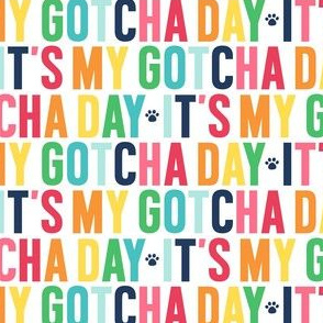 paws its my gotcha day rainbow with navy UPPERcase