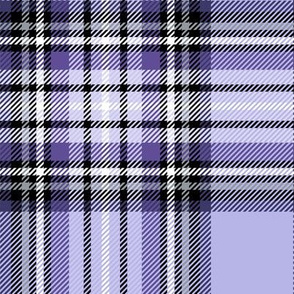 LG purple tartan style 1 with 8in repeat