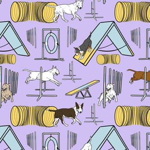 Simple Bull Terrier agility dogs - purple
