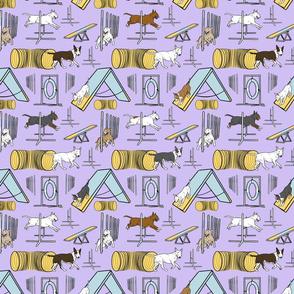Small Simple Bull Terrier agility dogs - purple