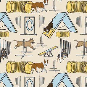 Simple colored Bull Terrier agility dogs - tan