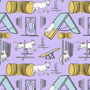 Simple white Bull Terrier agility dogs - purple