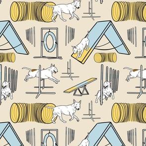 Simple white Bull Terrier agility dogs - tan