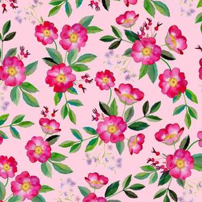 briar rose pink