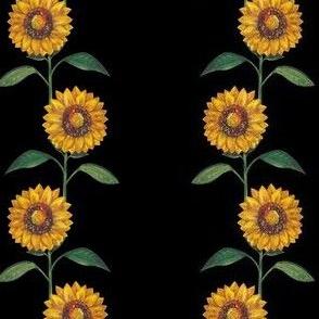 sunflowers (black)
