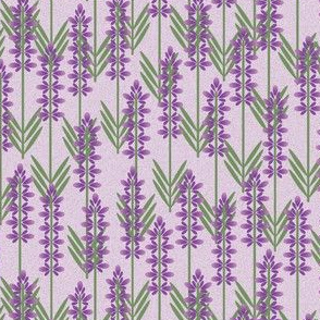 lavender on lilac