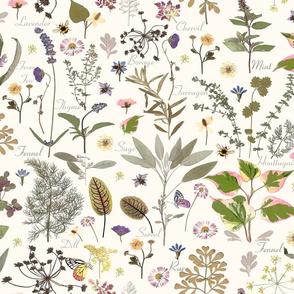 My Herb Garden jumbo w names