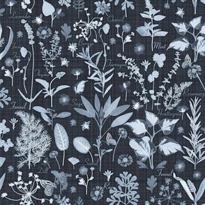 herb garden cyanotype look