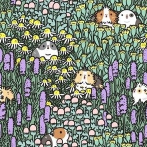 Guinea Pigs and Garden Herbs Pattern