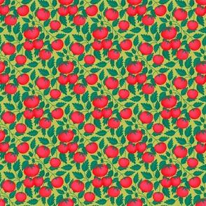Tomato Basil Dreams