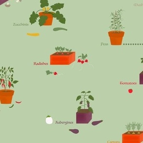 My potted vegetable garden on green