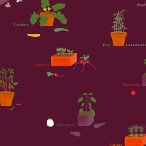 My potted vegetable garden on wine berry