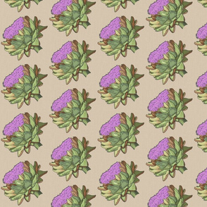 hand-drawn french artichokes – large