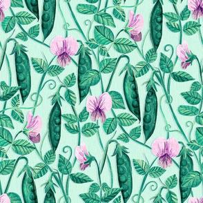 Fresh Garden Peas - mint