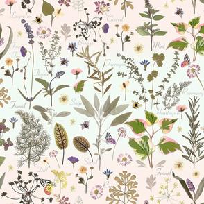My Herb Garden Mint Blush Ombre