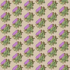 hand-drawn purple artichokes – medium
