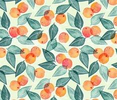 Honey Gherkin - Apricots