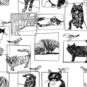 kitty sketchbook
