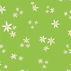 Summer Lemon Blossoms Green