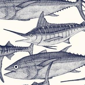 Atlantic fish blue
