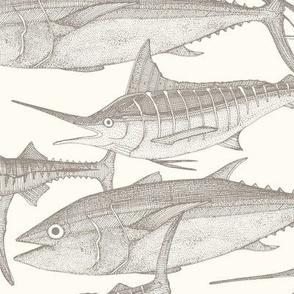 Atlantic fish natural