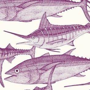 Atlantic fish purple
