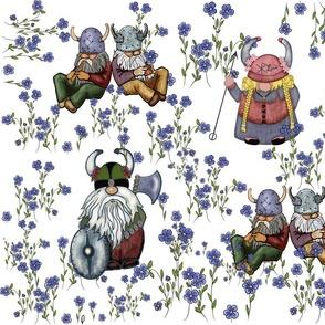 Viking Gnomes
