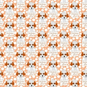 Cavapoo or Cavadoodle Cuteness, puppy dog