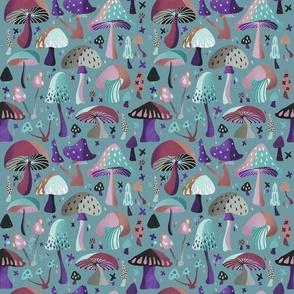 Mushroom Collection –Galaxy