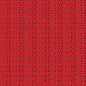 Watermelon Seeds - red background