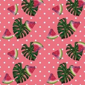 watermelon & monstera leaf (polkadots)