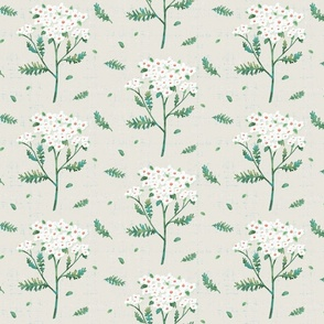 yarrow herb ivory and green