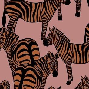 Zebras Blush Orange