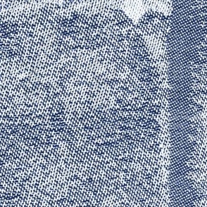 Jacquard Dark Woven Texture Imitation Blue