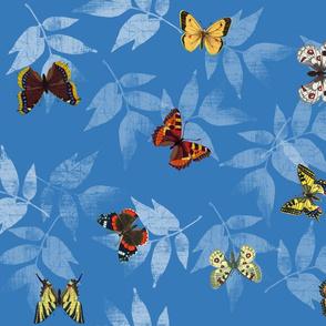 butterflys_fq_blue_wleaves