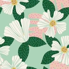 Hibiscus Mint Green