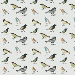 Fantasy birds grey