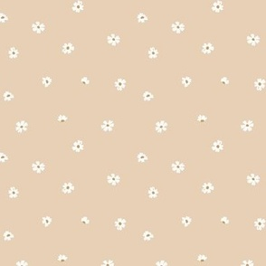Delicate little white daisies sweet minimalist scandinavian style boho blossom flowers on blush beige sand