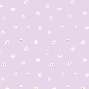 Delicate little white daisies sweet minimalist scandinavian style boho blossom flowers on lilac pink