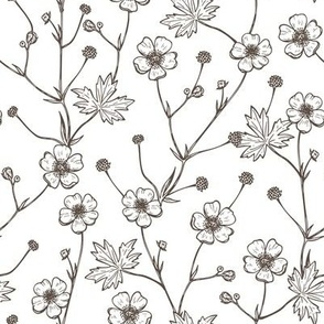 buttercup flowers hand drawn vintage pattern