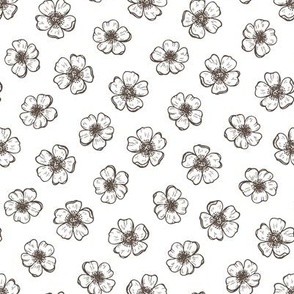 buttercup flowers hand drawn vintage