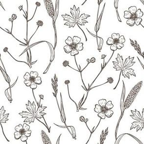 buttercup flowers herbs vintage pattern
