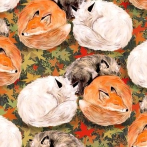 Three Foxes Nap On Autumn Leaves