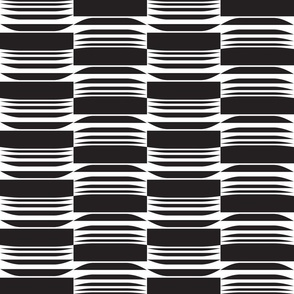 Black and White Geo