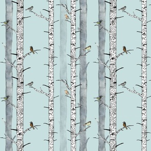 Birds in birch trees