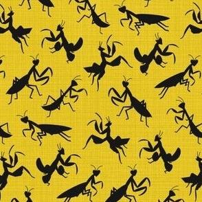 A Simple Assortment of Praying Mantises - Black & Yellow